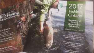 hunting and fishing licenses in wellington
